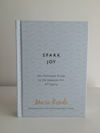 Blonde In Grey - Spark Joy