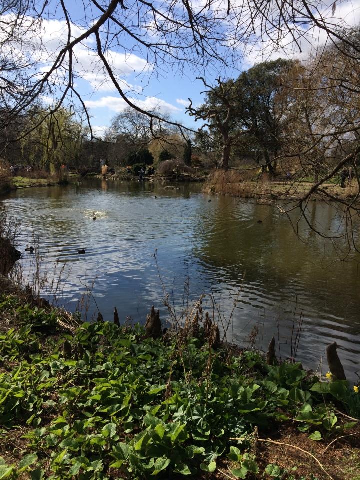 Blonde In Grey - Roaming in Regent's Park (5)