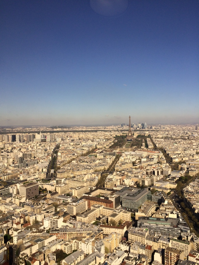 Blonde in Grey - Morning Over Paris (11)