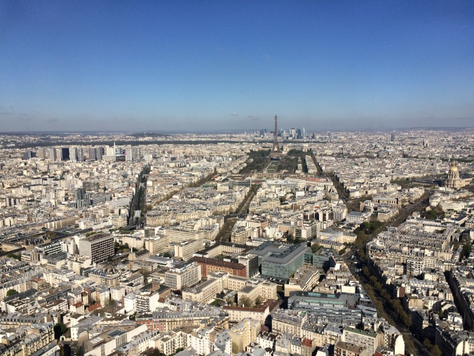 Blonde in Grey - Morning Over Paris (13)