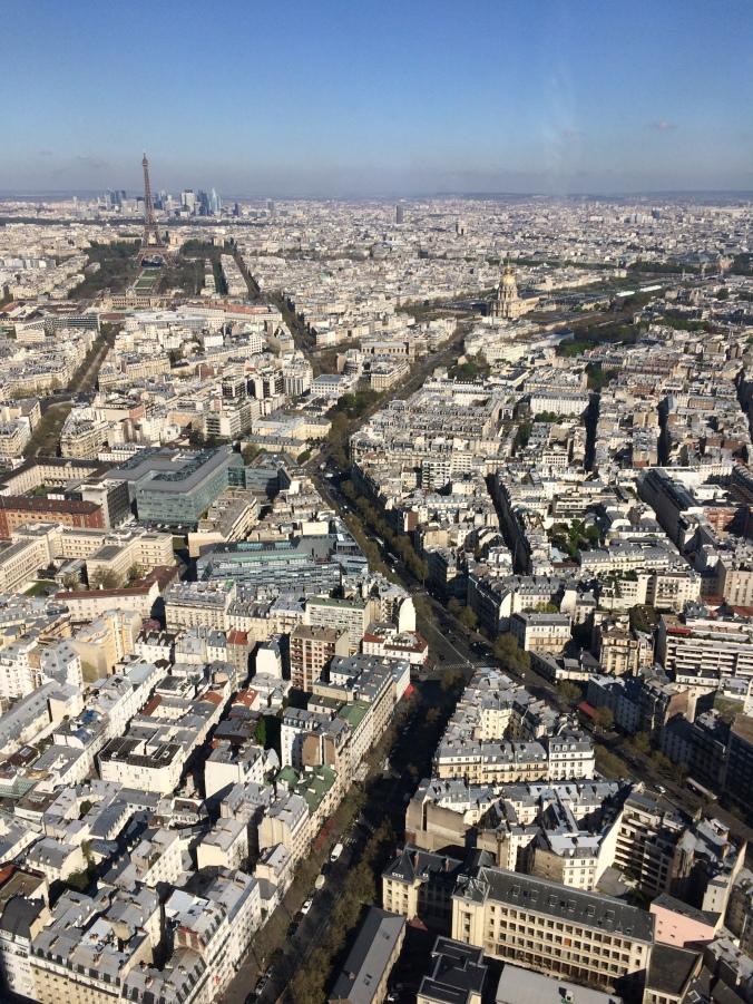 Blonde in Grey - Morning Over Paris (29)