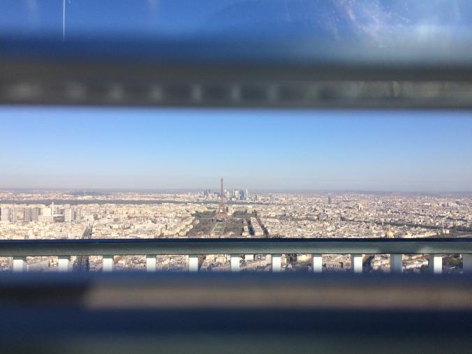 Blonde in Grey - Morning Over Paris (3)