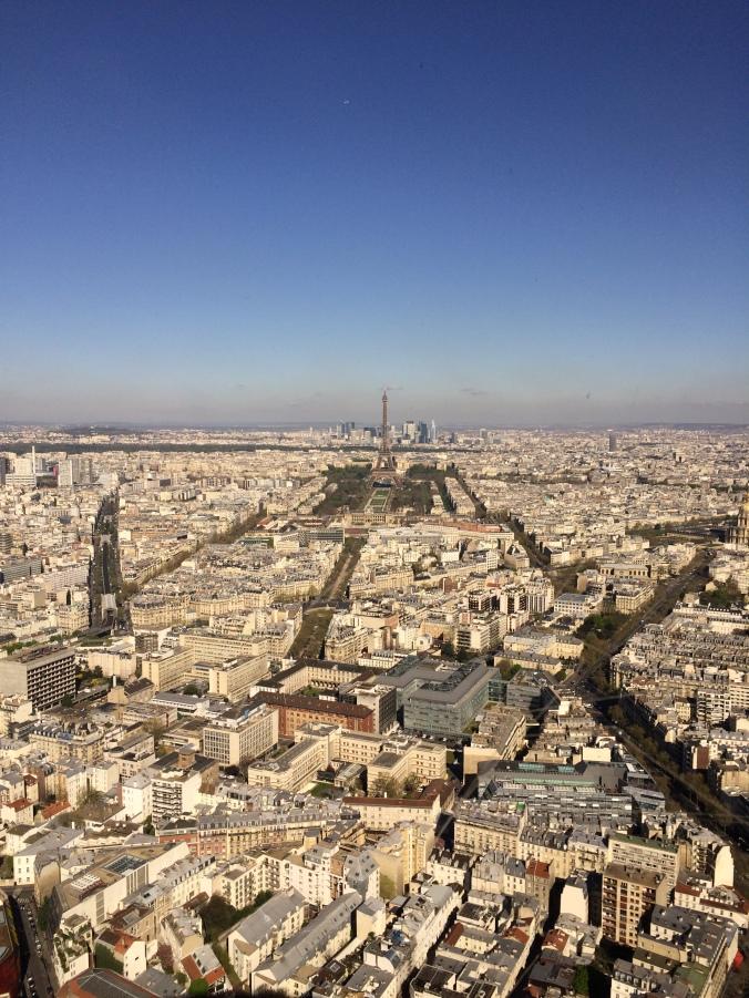 Blonde in Grey - Morning Over Paris (35)