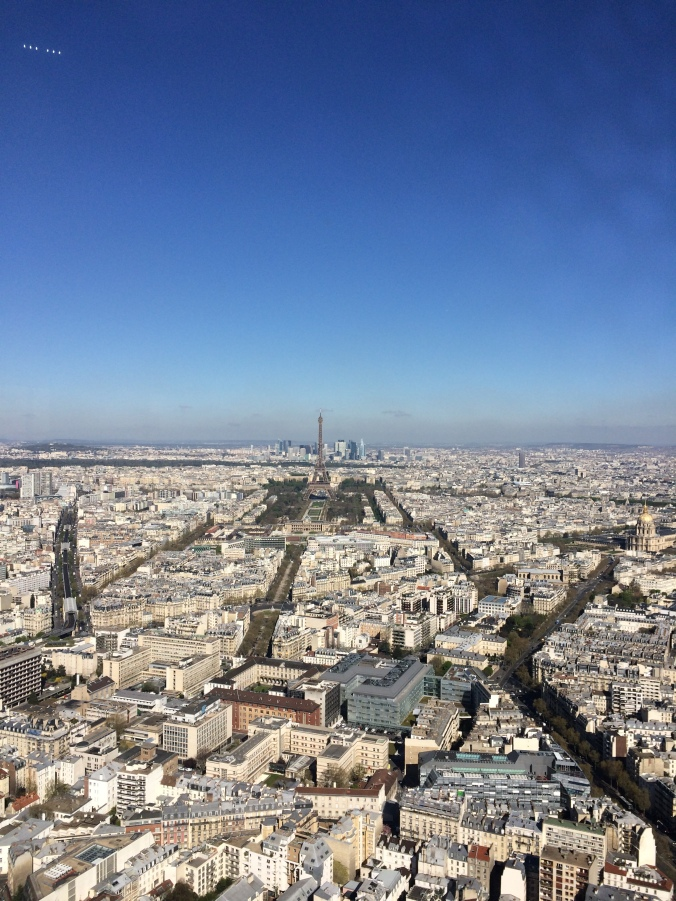 Blonde in Grey - Morning Over Paris (37)