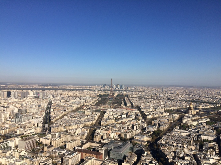 Blonde in Grey - Morning Over Paris (4)