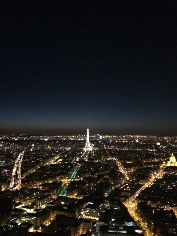 Blonde in Grey - Morning Over Paris (44)