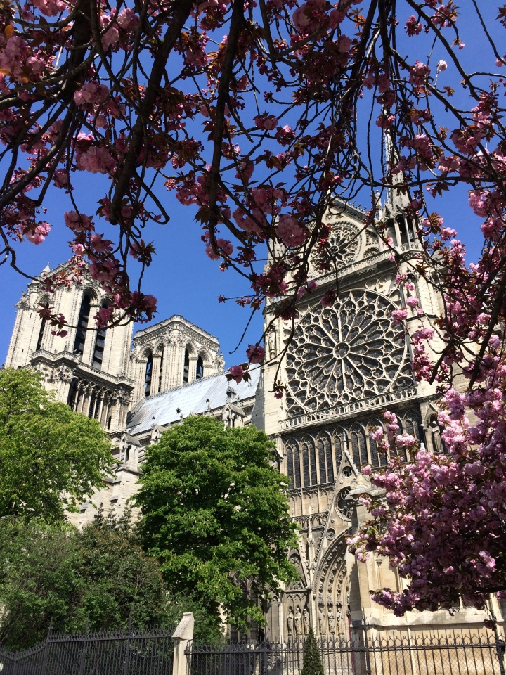Blonde in Grey - Notes From Notre Dame (26)