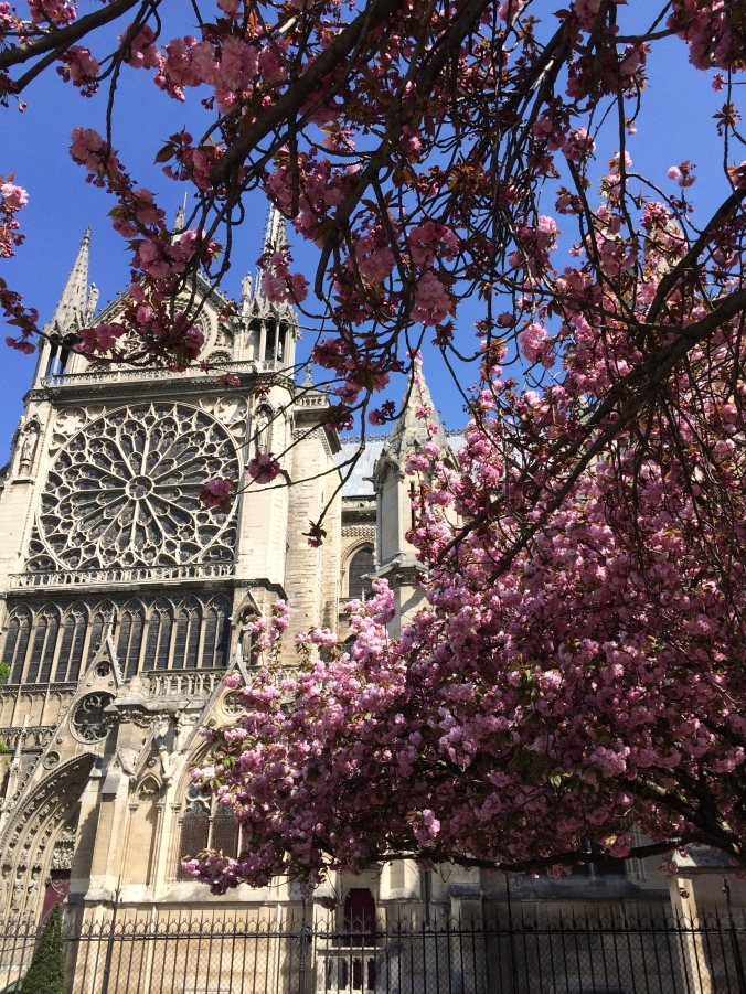 Blonde in Grey - Notes From Notre Dame (27)