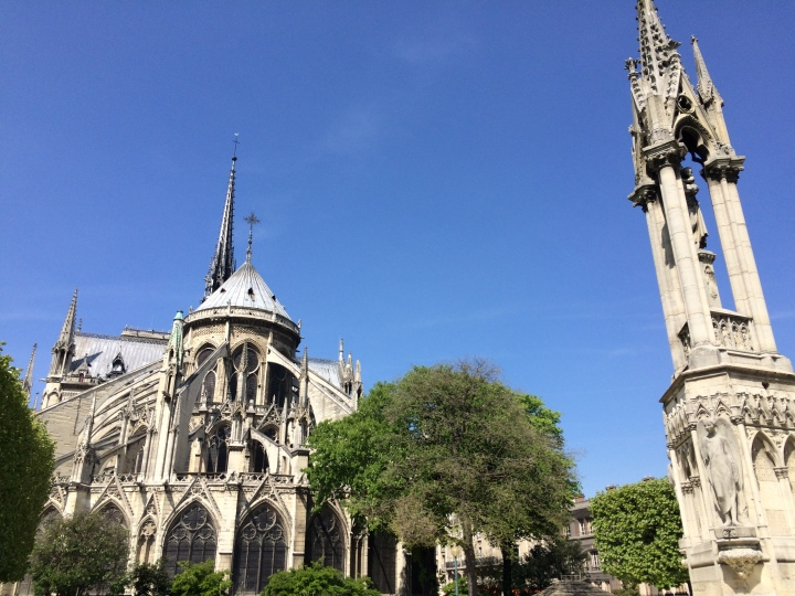 Blonde in Grey - Notes From Notre Dame (31)