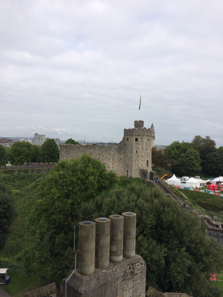 Blonde in Grey - Cardiff Castle (17)