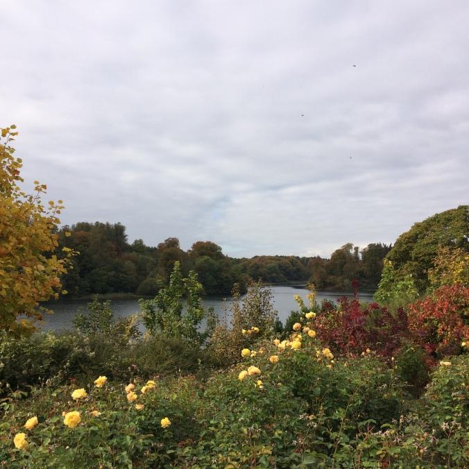 Blonde in Grey - Clouds Over Blenheim (6)