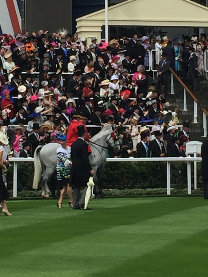 Blonde in Grey - Royal Ascot 2016 (5)