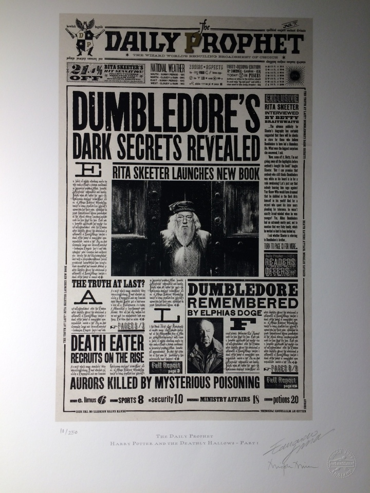 Blonde In Grey - The Art of Harry Potter (31)