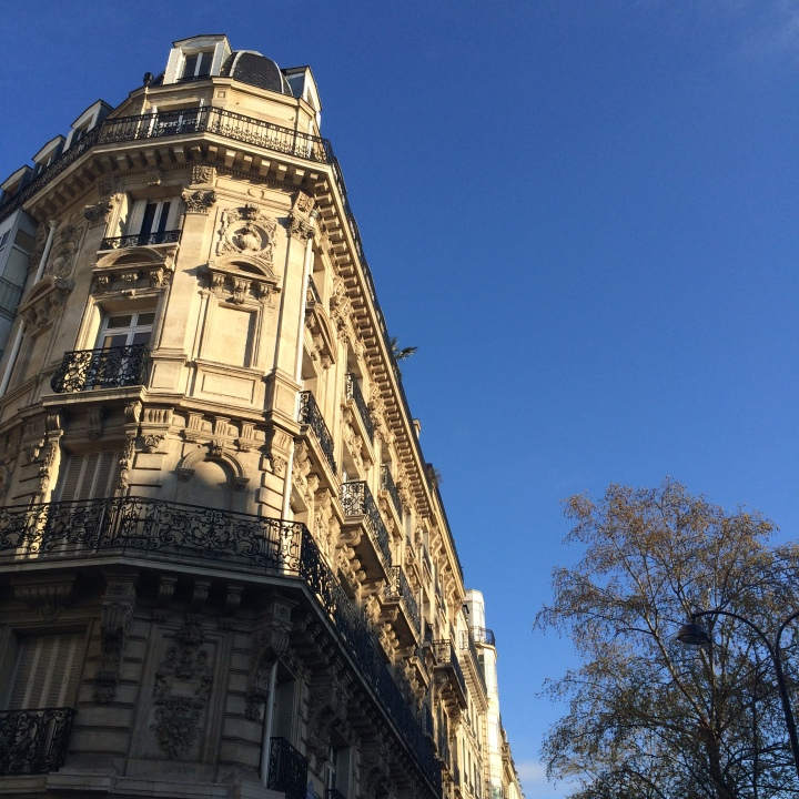 Blonde in Grey - The Beauty of Paris (4)