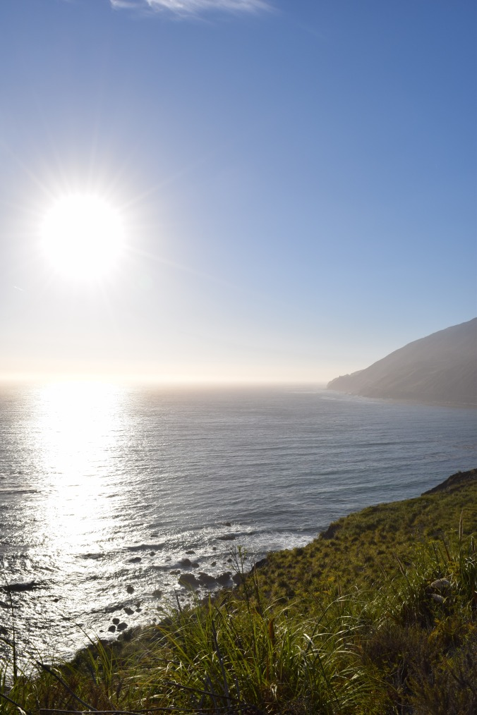 Big Seals and Big Sur (10)