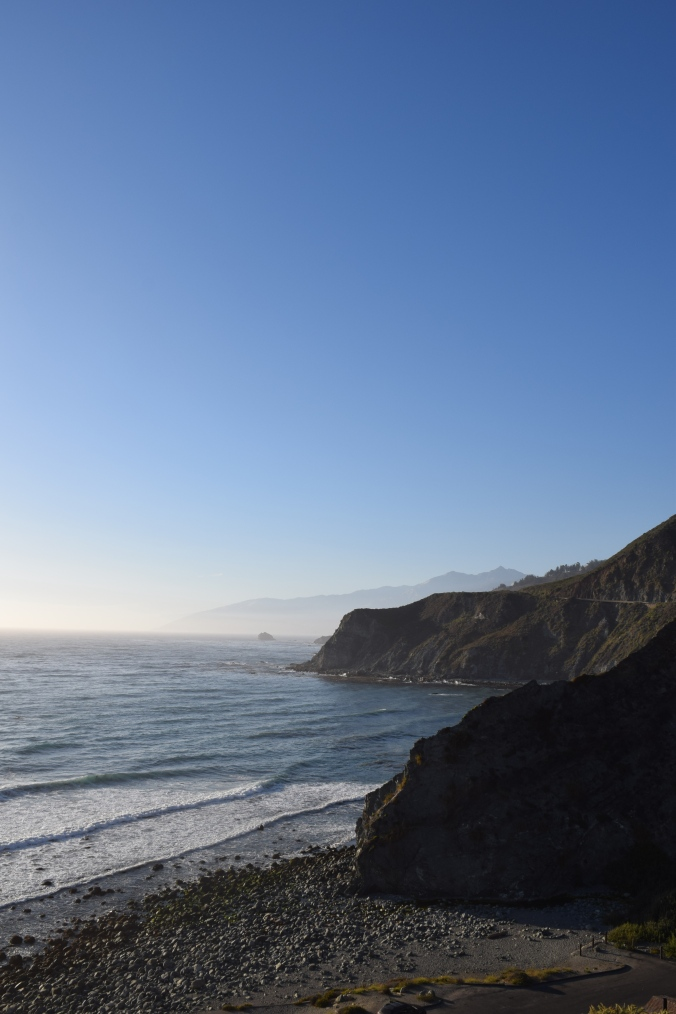 Big Seals and Big Sur (12)