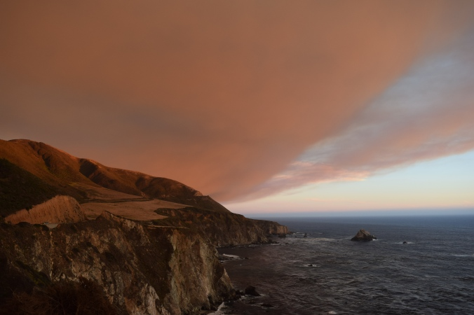 Big Seals and Big Sur (14)