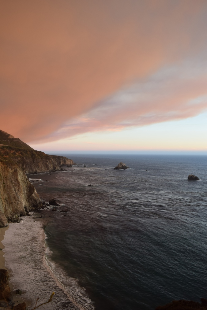 Big Seals and Big Sur (16)