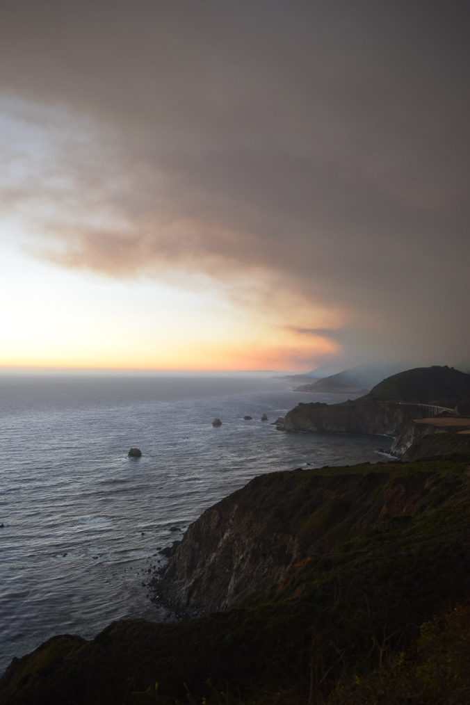 Big Seals and Big Sur (23)