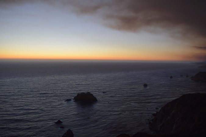 Big Seals and Big Sur (24)