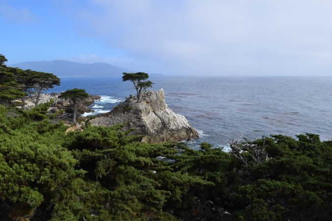 The Beauty of Big Sur (19)