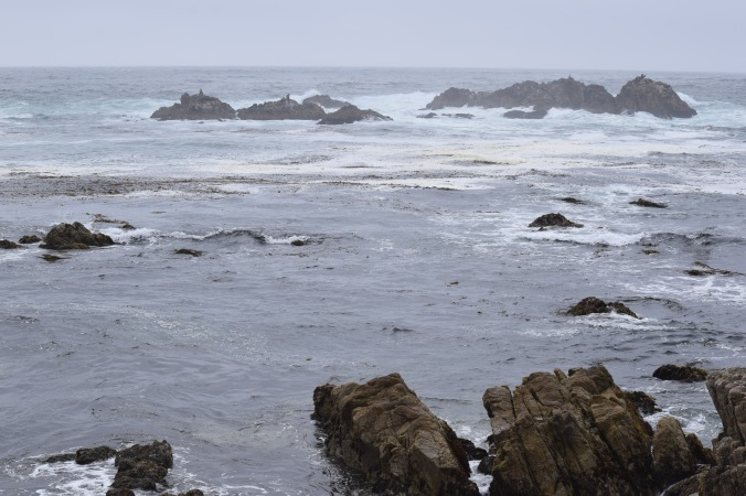 The Beauty of Big Sur (3)