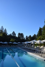 a-perfect-morning-in-napa-2