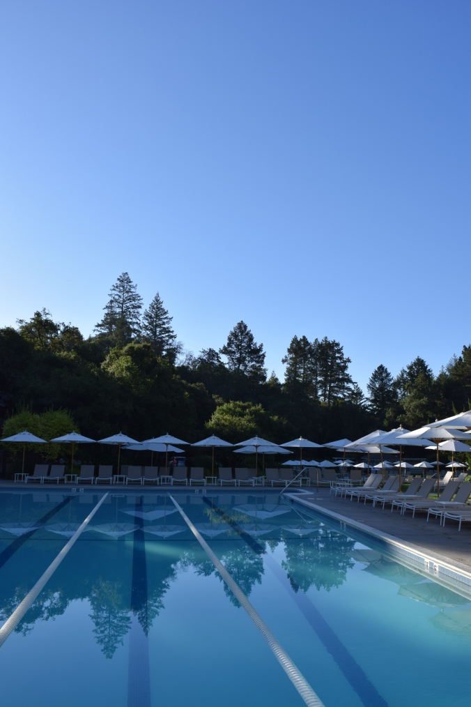 a-perfect-morning-in-napa-3