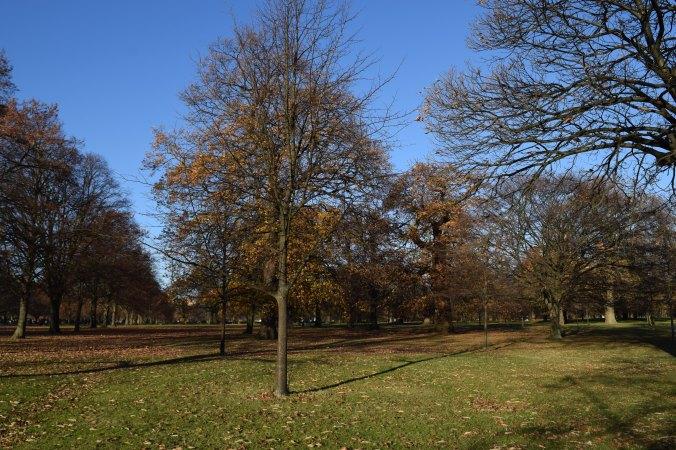 blonde-in-grey-kensington-gardens-6