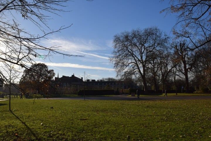 blonde-in-grey-kensington-gardens-7