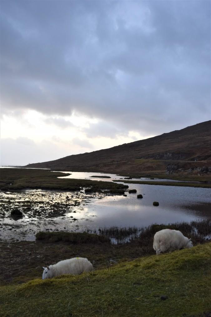 scotland-part-3-54